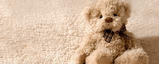 Teddy Bear Collectors