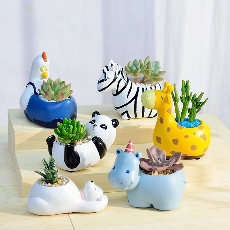 Looking for adorable planters?
