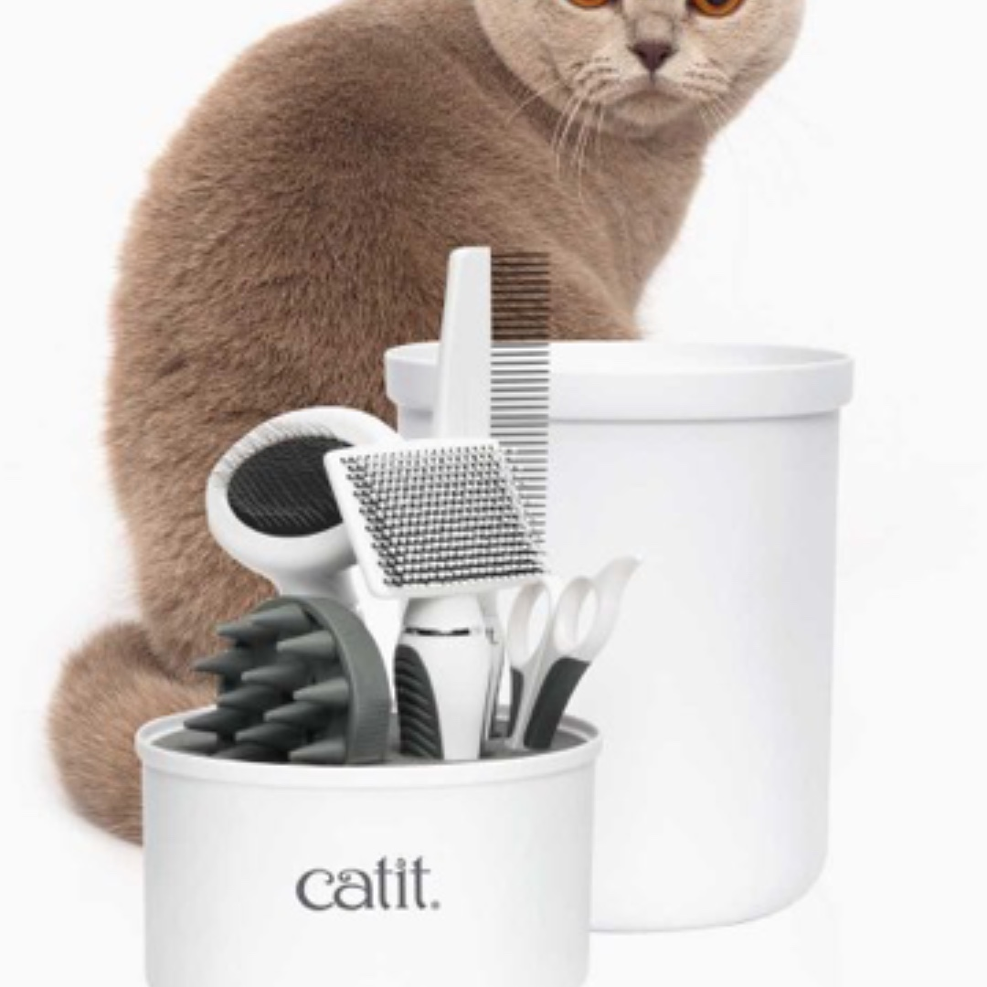 Cat food/ accessories preorder from Malaysia!