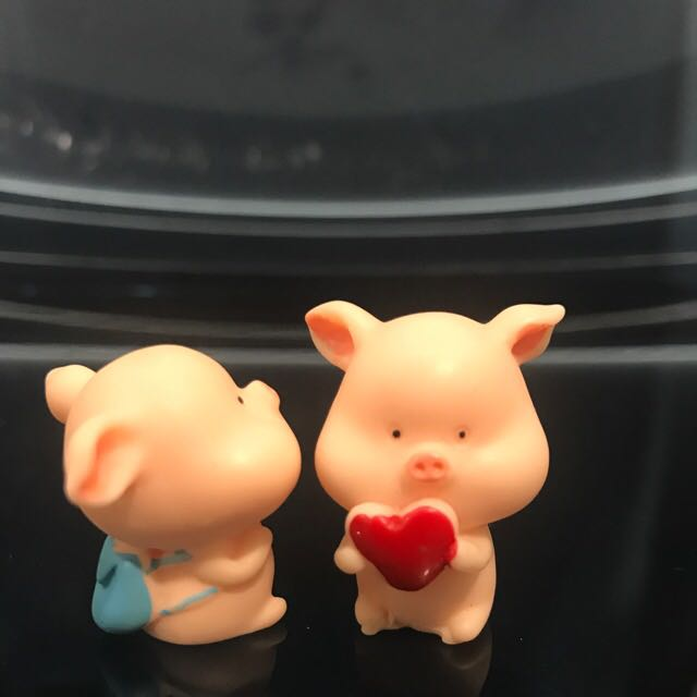 Piglets to welcome the year of Pig