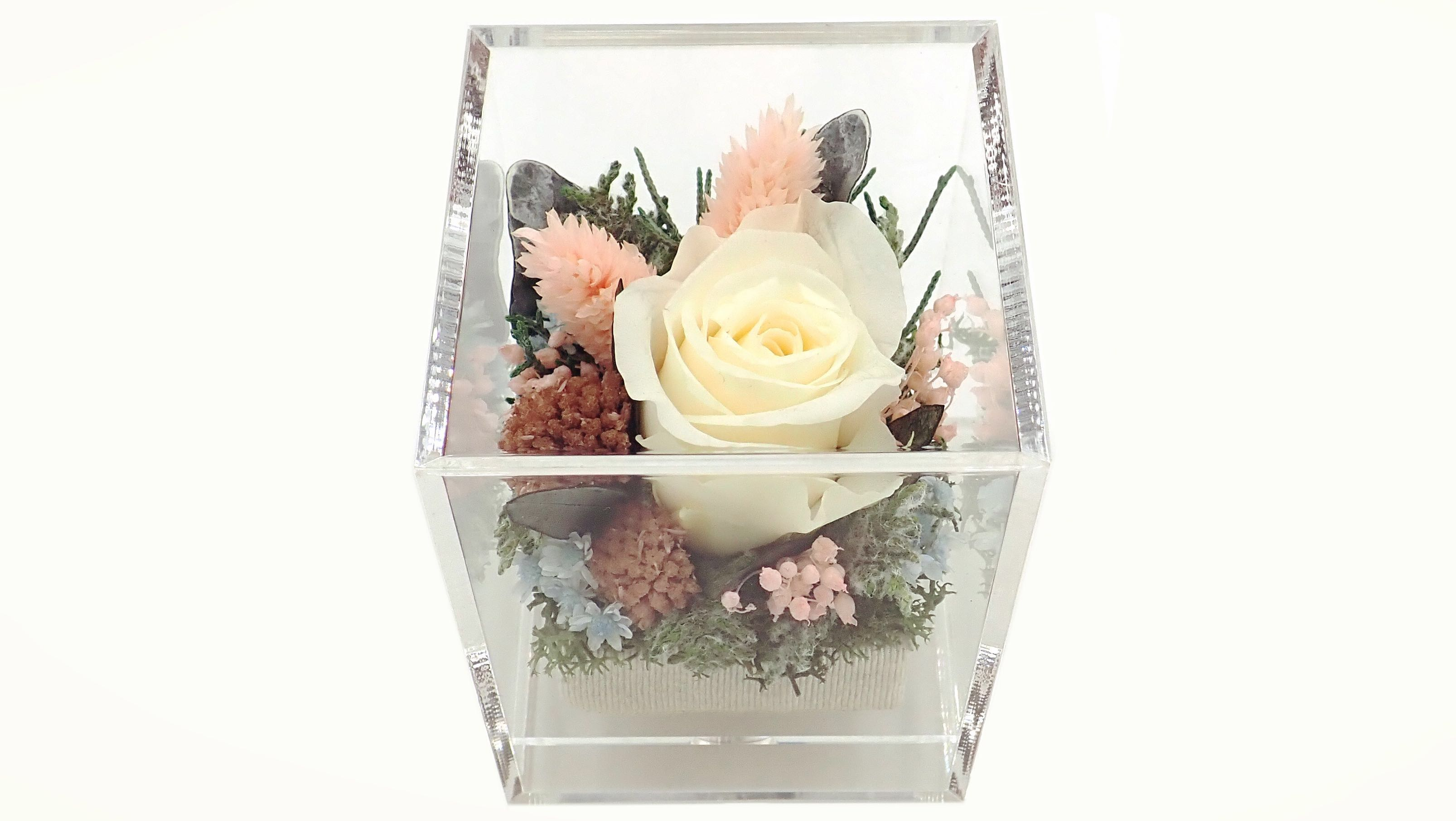 10% Off For All Preserved Flower Gifts