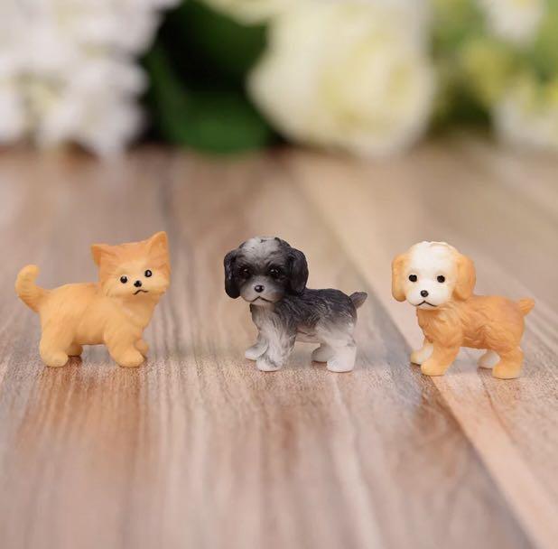 Little doggies .. so cute for your terrarium