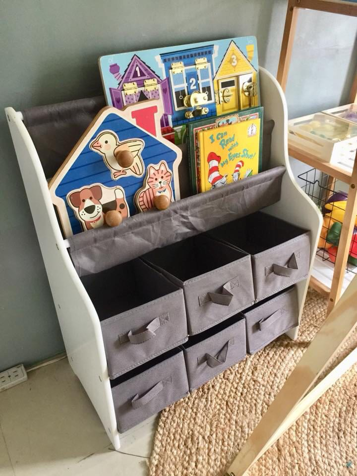 Toys and Books organizer