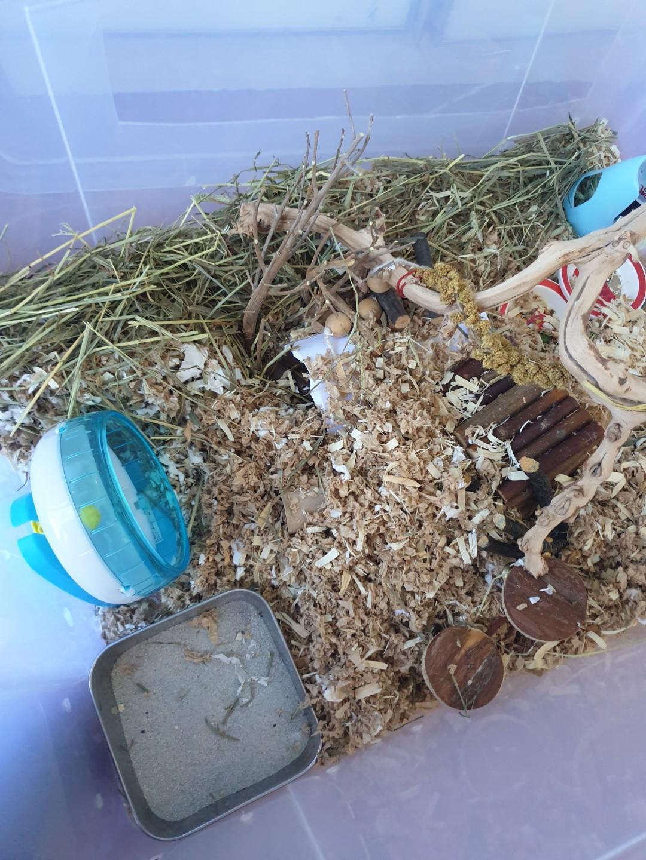 German hamster cage!